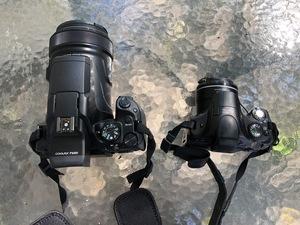 Canon SX40HS vs Nikon P1000