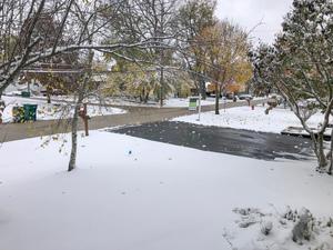 Snowy Halloween